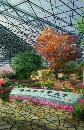 山东菏泽牡丹园展览温室室内景观设计